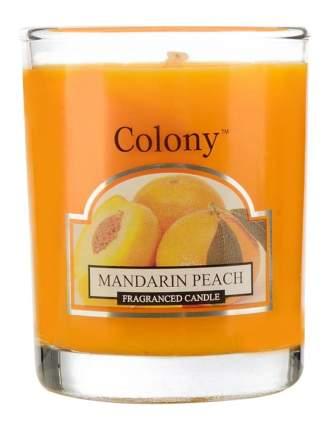 Ароматическая Wax Lyrical свеча Colony Мандарин и персик CH3618