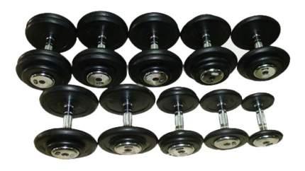 Гантельный ряд Matrixот 2,5 до 50 кг