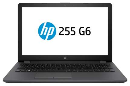 Ноутбук HP 255 G6 3VJ71ES