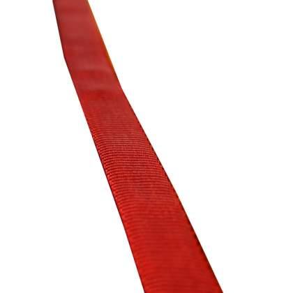 Стропа Edelweiss 19 мм/1 м красная