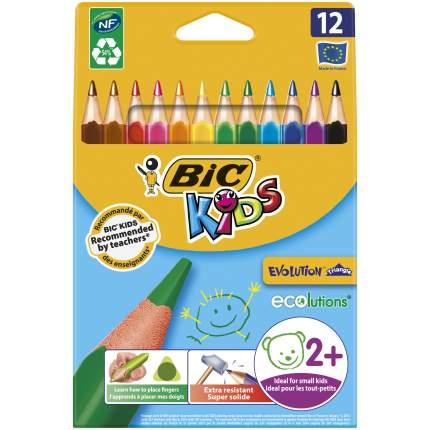Карандаши цветные BIC Kids ECOlutions Evolution Triangle Коробка x12