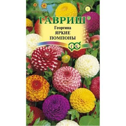 Семена Георгина Яркие помпоны, Смесь, 0,2 г Гавриш