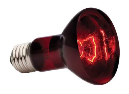 Инфракрасная лампа для террариума Exo Terra Heat Glo, 75 Вт