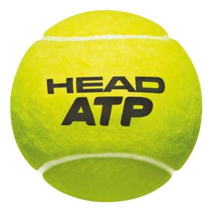 Теннисный мяч HEAD ATP 570303/570311 3 шт