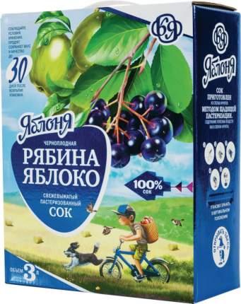 Сок свежевыжатый Яблоня черноплодная рябина-яблоко 3 л