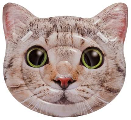 """Надувной матрас """"Котик"""" с ручками, 147 х 135 см Intex"""