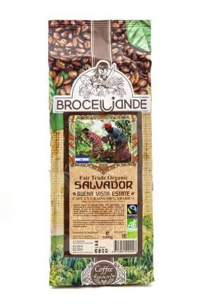 Кофе в зернах Broceliande Salvador  buena vista estate 1 кг