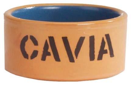 Одинарная миска для грызунов Beeztees, керамика, бежевый, голубой, 0.16 л