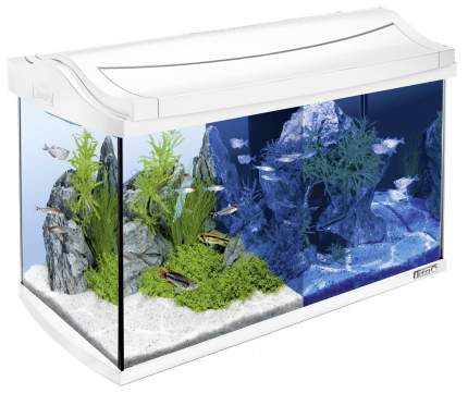 Аквариумный комплекс для рыб, креветок, ракообразных Tetra AquaArt, 60 л