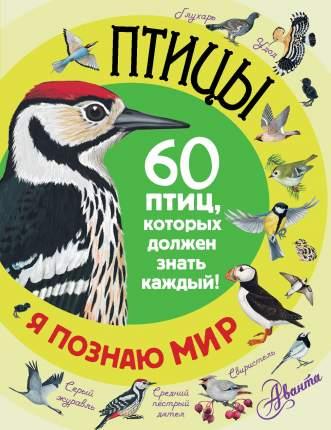 Книга птицы