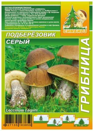 Мицелий грибов Грибница субстрат микоризный Подберезовик Серый, 1 л Симбиоз