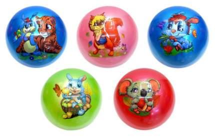Мячик детский Shantou Gepai Животные 22 см