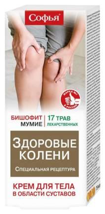 Крем для тела Софья 17 лекарственных трав с бишофитом 75 мл