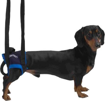 Вожжи для животных Kruuse Walkabout Harness на задние конечности для собак, синий, S