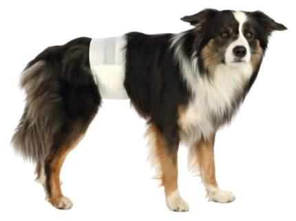 Подгузники для домашних животных TRIXE 23641 для кобелей S-M