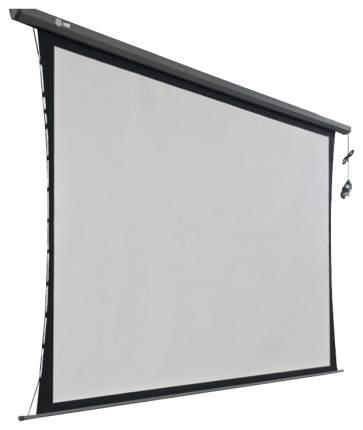 Экран для видеопроектора Cactus Professional Tension Motoscreen CS-PSPMT-206x274 Белый