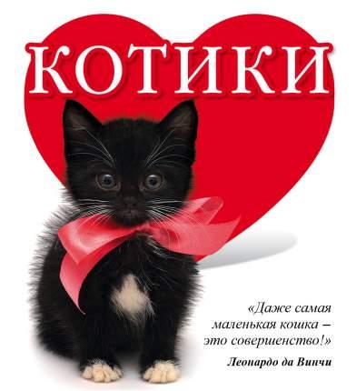 Книга котики