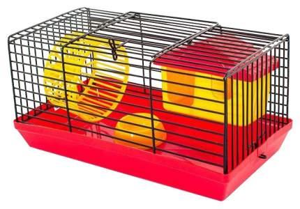 Клетка для крыс, морских свинок, мышей, хомяков Дарэлл 20х14х25см
