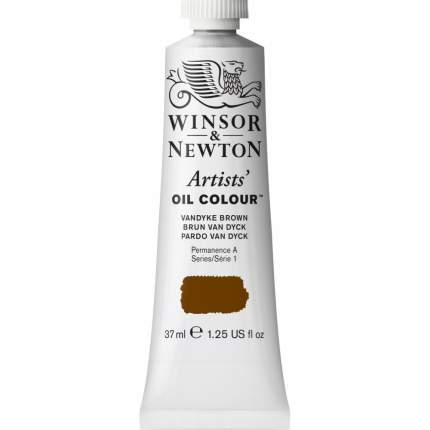 Масляная краска Winsor&Newton Artists коричневый ван дейк 37 мл