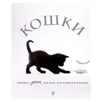 Книга Кошки, книжка-Сюрприз для Всех, кто Влюблен В кошек