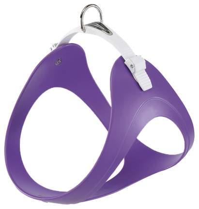 Шлейка для собак Ferplast ERGOFLEX P (A: 45,5÷53,5 cm - B: 49÷57 cm, Фиалковый)