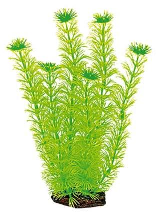 Искусственное растение Dezzie