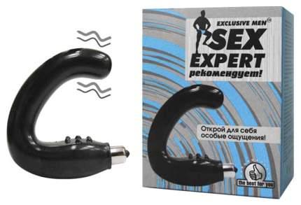 Массажер простаты Bior toys серии Sex Expert черный