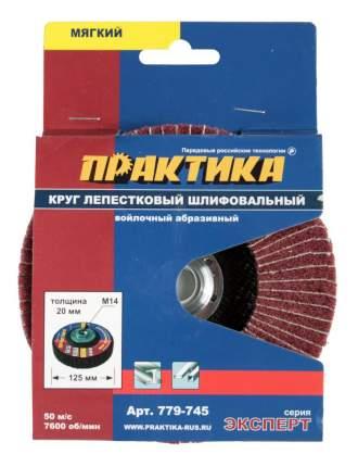 Круг лепестковый радиальный для дрелей, шуруповертов Практика 779-745