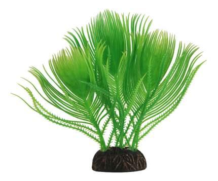 Laguna Растение Миреофилум вариегата, 16 см