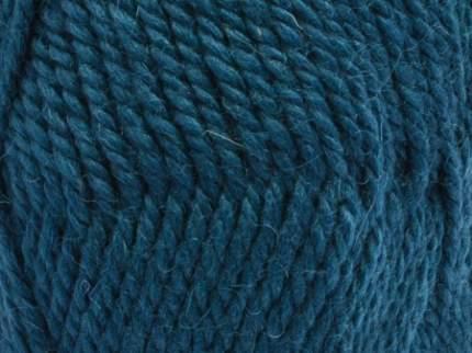 Пряжа для вязания Камтекс Пышка 10 шт. по 100 г 110 м цвет 140 т,лазурь