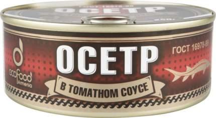 Осетр Ecofood Armenia в томатном соусе 240 г