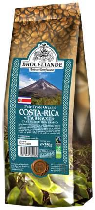 Кофе молотый Broceliande Costa-Rica 250 г