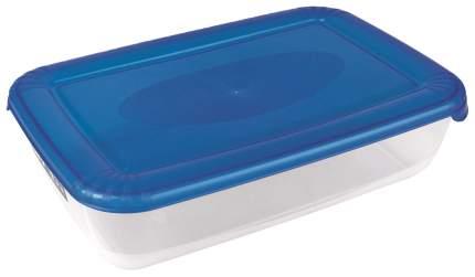 Контейнер для хранения пищи Aro Прозрачный, голубой