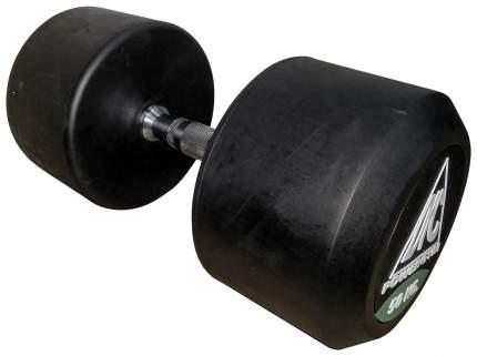 Пара гантелей Dfc Powergym DB002-50 2 шт. по 50 кг