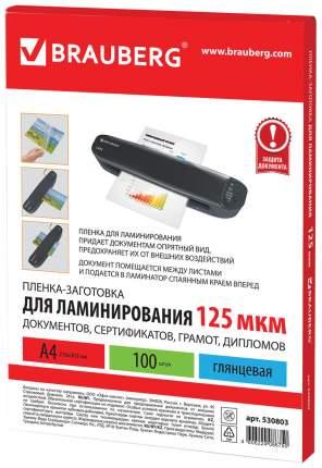 Пленка-заготовка для ламинирования (530803), 100 штук, для формата А4