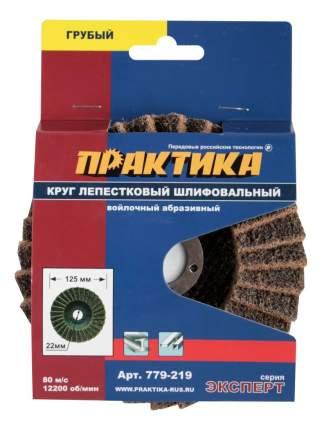 Круг лепестковый радиальный для дрелей, шуруповертов Практика 779-219
