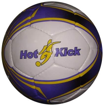 Футбольный мяч Tata Pak №5 white/blue