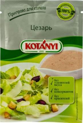 Приправа Kotanyi для салата цезарь 13 г