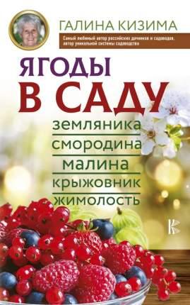 Ягоды В Саду. Земляника, Смородина, Малина, крыжовник, Жимолость