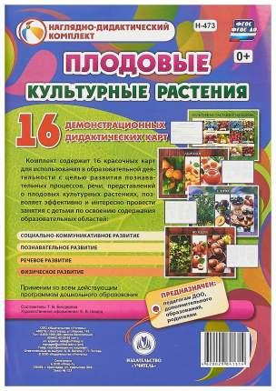 Культурные растения: плодовые: 16 демонстрационных дидактических красочных карт с оборотом