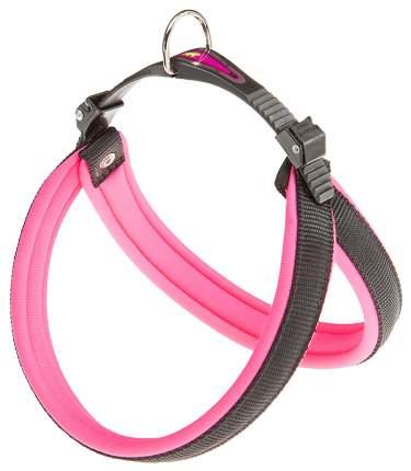 Шлейка для собак Ferplast Agila Fluo  (A=B 50/58см 20мм, Розовый)