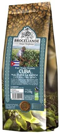 Кофе Broceliande cuba молотый 250 г