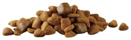 Сухой корм для собак Purina One Мини Здоровый вес, индейка, рис, 0.6кг