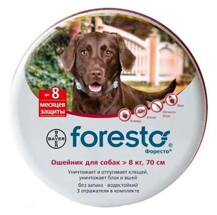 Ошейник Bayer Foresto для собак 70см