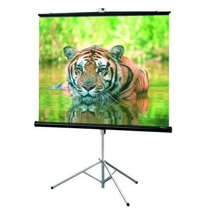 Экран для видеопроектора Draper Consul 216003