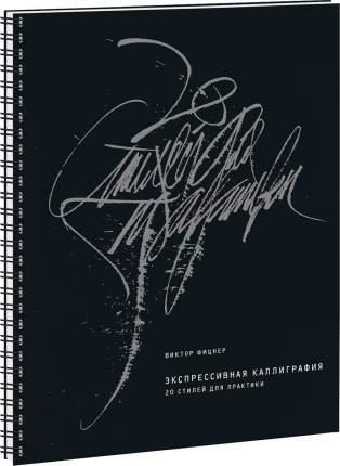 Книга Экспрессивная каллиграфия. 20 стилей для практики