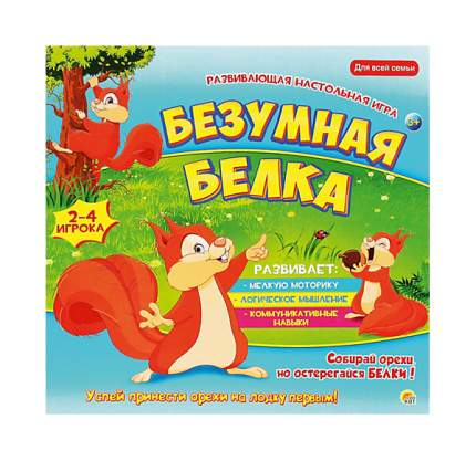 Рыжий кот Настольная игра безумная белка Рыжий кот ин-6414