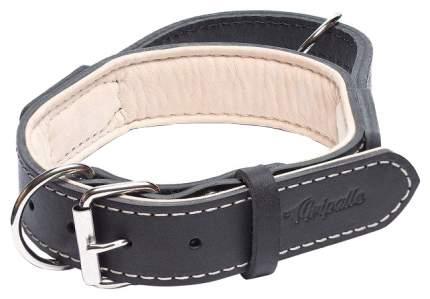 Ошейник для собак Gripalle Портер, кожаный, стальная фурнитура, черный, 40мм х 60см