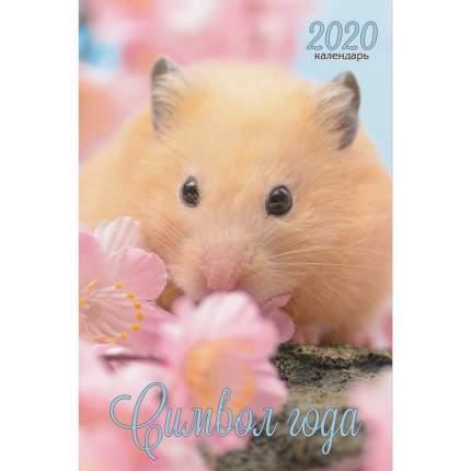 Календарь 2020 Символ года Дизайн 4 (Евроспираль),КПВС2004