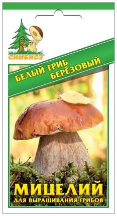 Мицелий грибов Зерновой Белый гриб Березовый, 30 мл Симбиоз